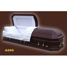 Гроб A666