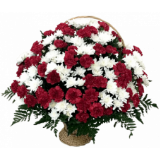 КОРЗИНА «ХРИЗАНТЕМА» ИЗ ЖИВЫХ ЦВЕТОВ (1,1м) (гвоздика100шт, хризантемы, аспарагус, гипсофилл, рабе